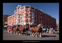 Strator Hotel and Cowboy Parade